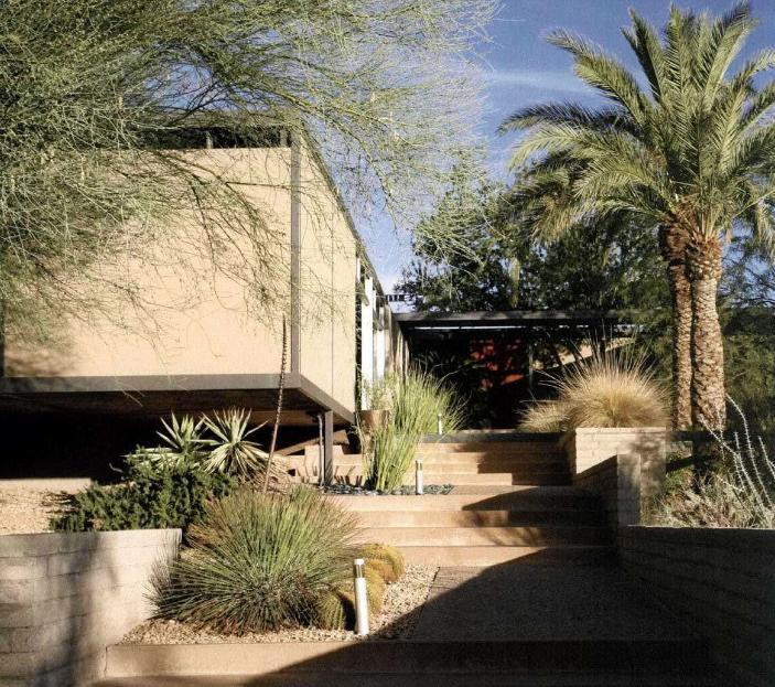 沙漠别墅景观设计